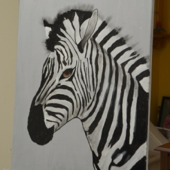 Zebra Shading stage 3 [Hector]