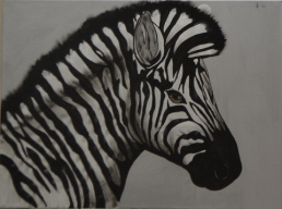 Zebra Shading stage 3 [Marylin]