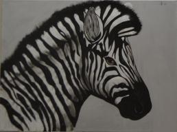 Zebra Shading stage 3 [Marylin]