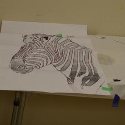 Zebra Start [1]
