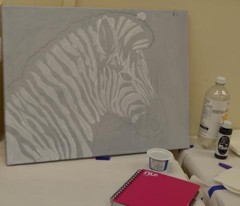 Zebra White stage [Marylin]
